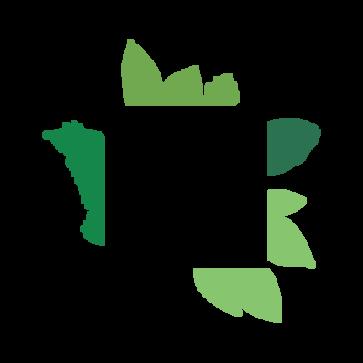 theparks-logo-pos-cmyk.png