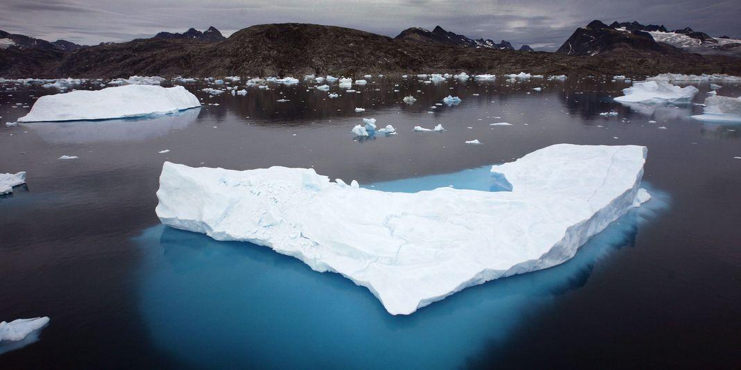 1222323_3_260c_icebergs-au-groenland-en-juillet-2007_32230a7d1087c6ec24909eee13489052.jpg