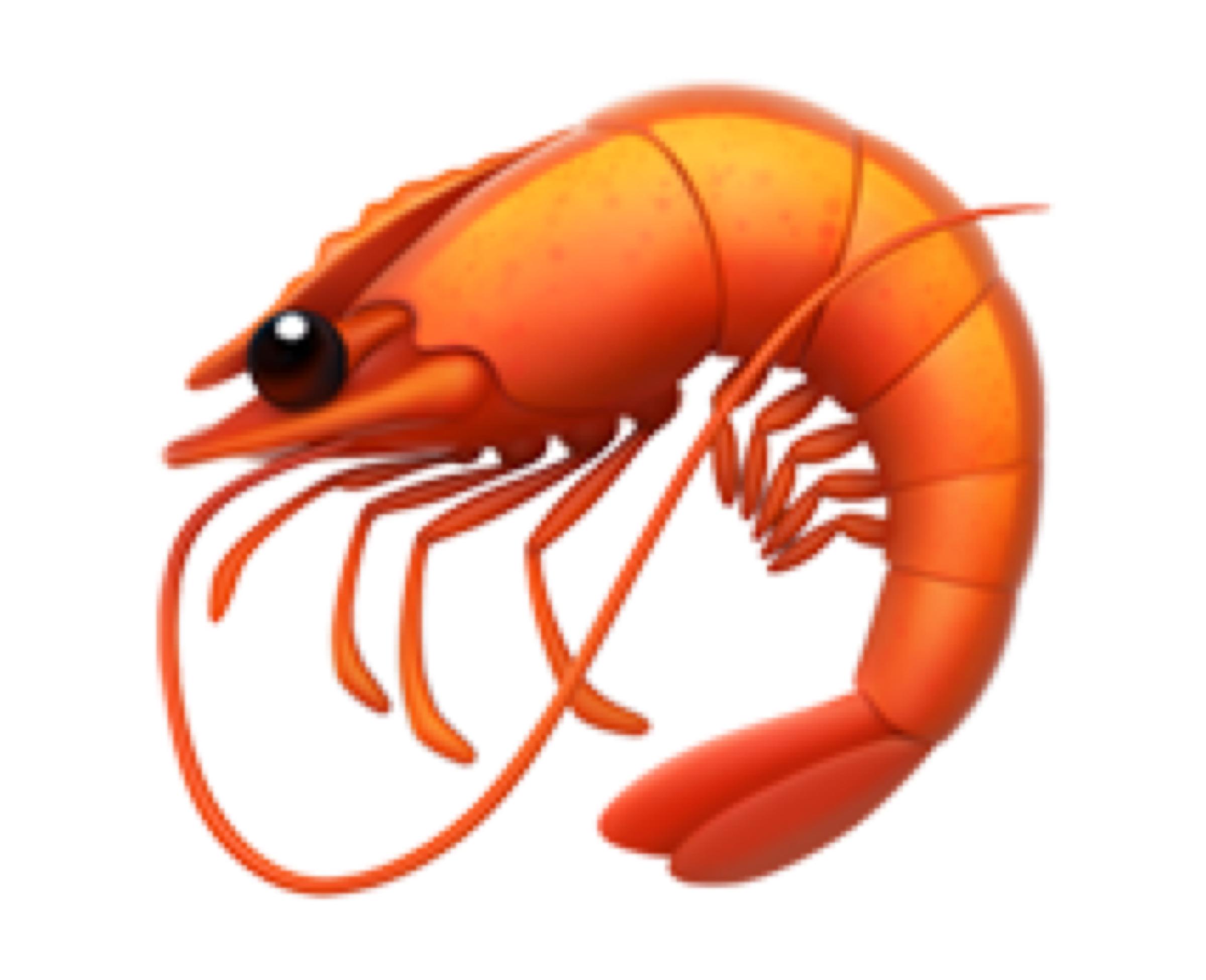 Shrimp (🦐)