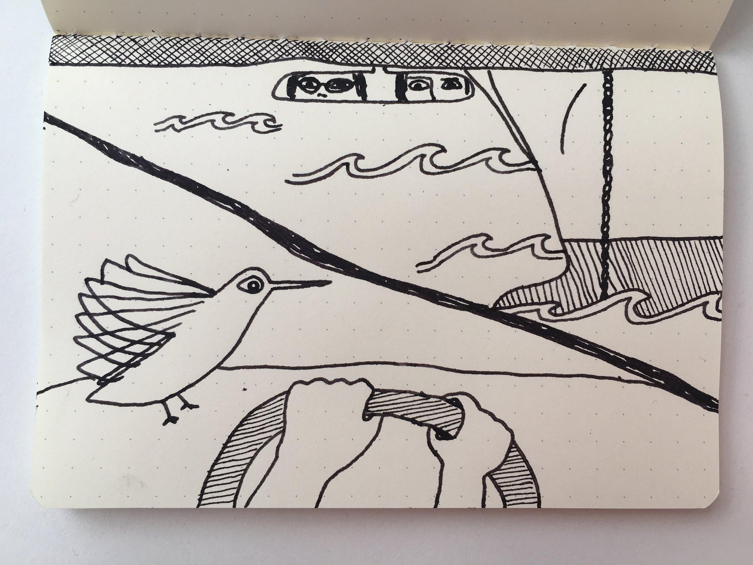 Apologies to the hummingbird. -