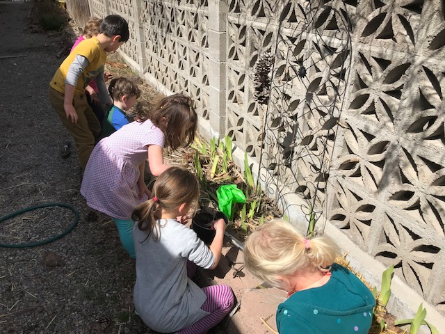 - We found out that birds often use mud to make their nests stick together. We mixed mud, gathered more materials and tried again.