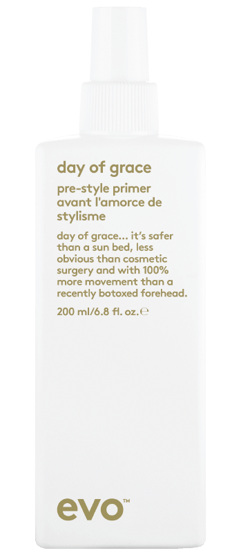 EVO Day of Grace Leave in conditioner styling product