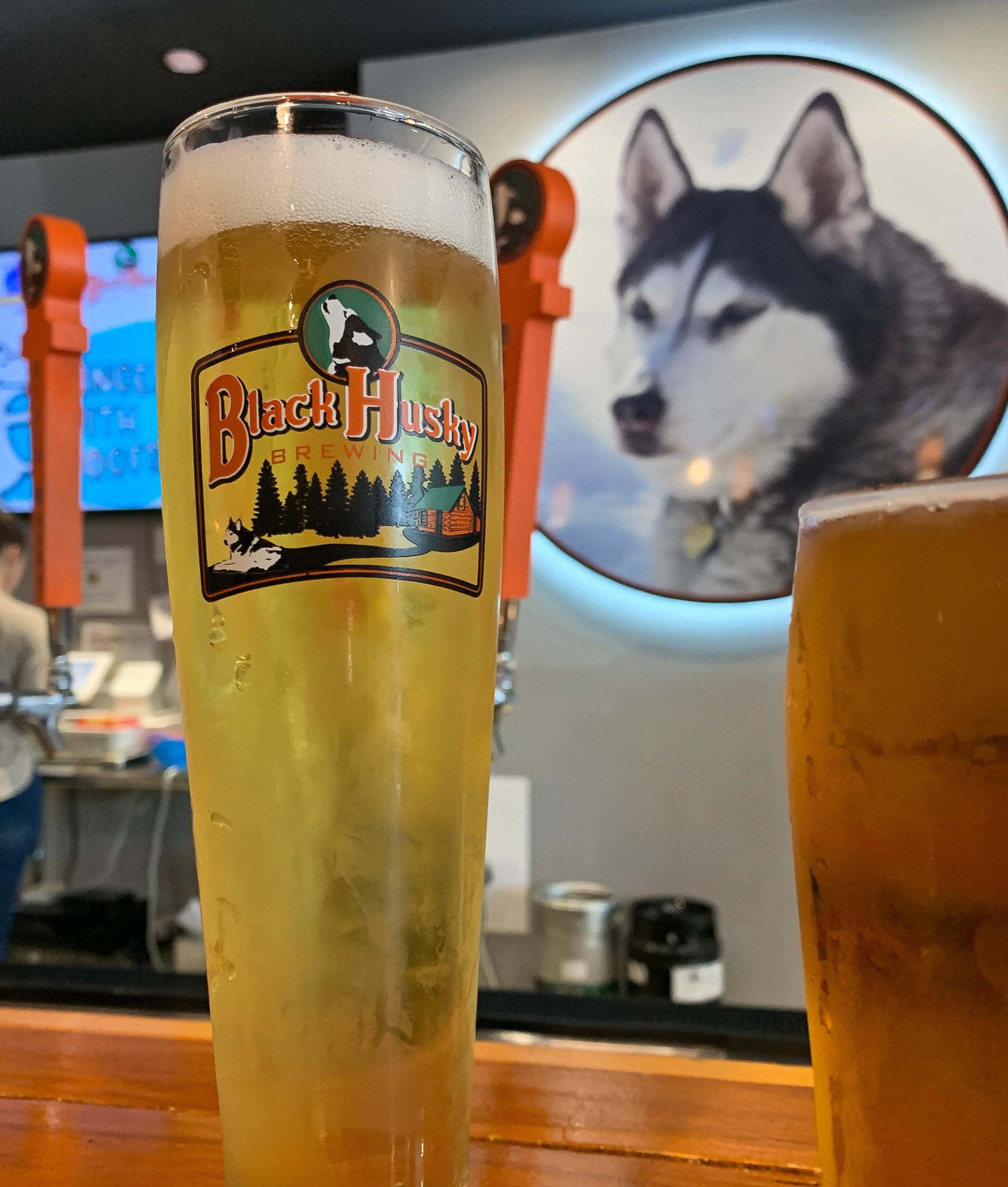 Black Husky Brewing  - 909 E. Locust, Milwaukee, WI