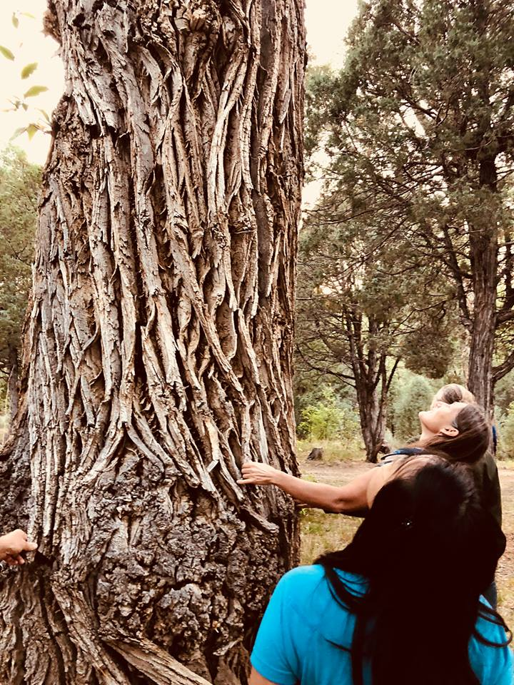Sabine and Students Communing with Trees in Talpa Canyon, 2018
