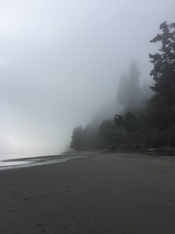 foggyshore.jpg