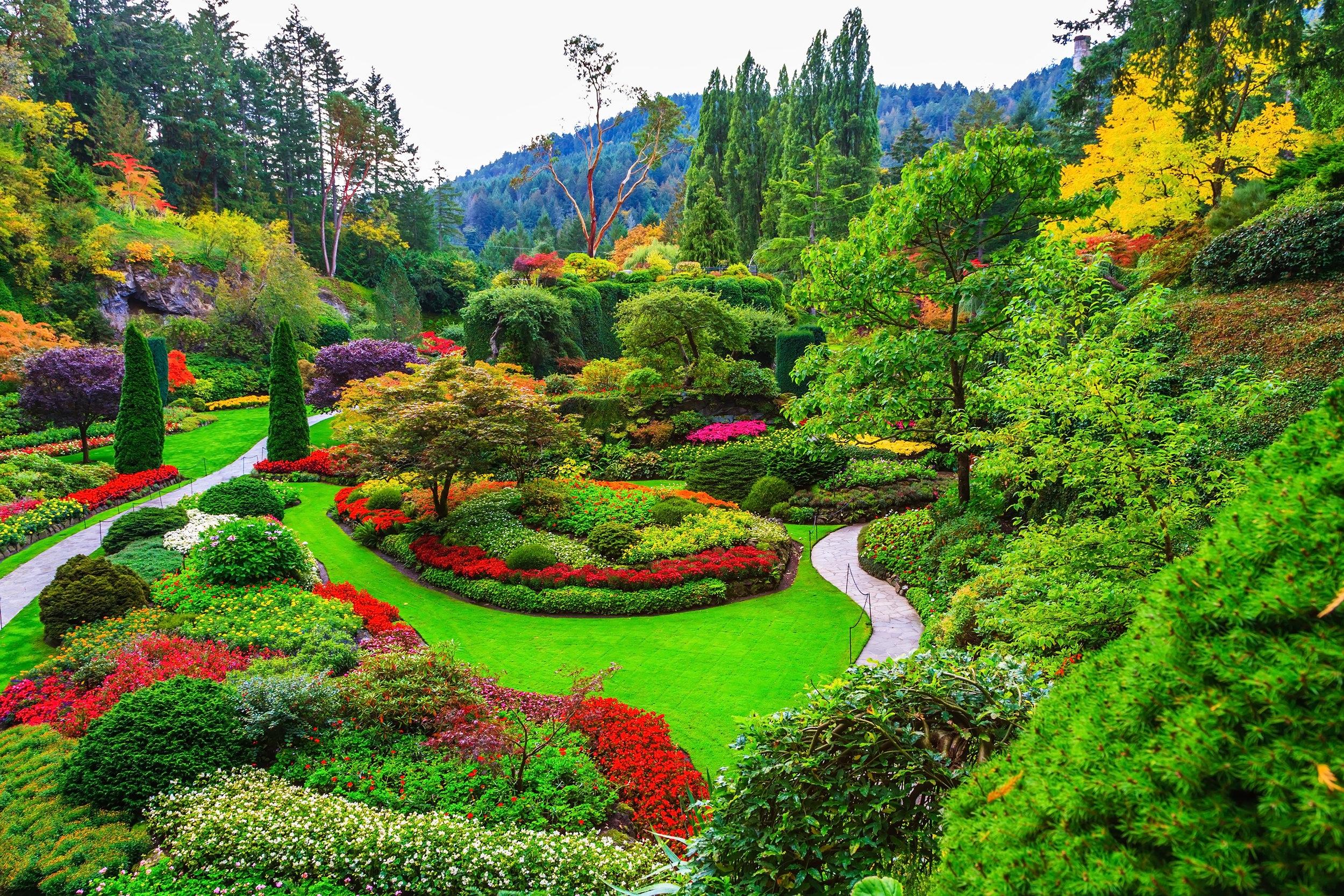 Gardens blog 1.jpg