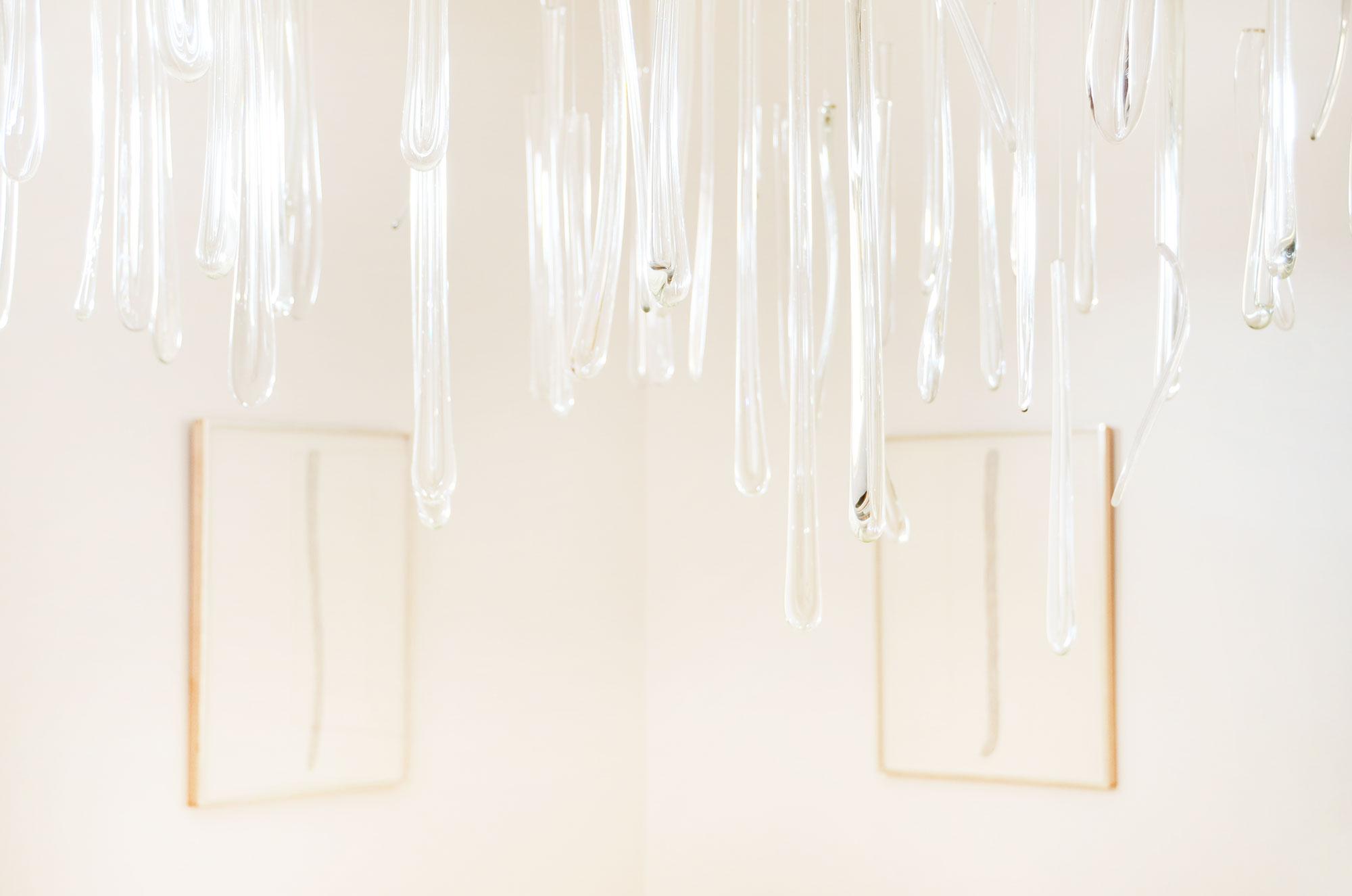 Glass Tongues by Nancy Riegelman