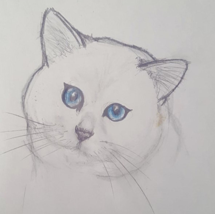 @hk_drawings_