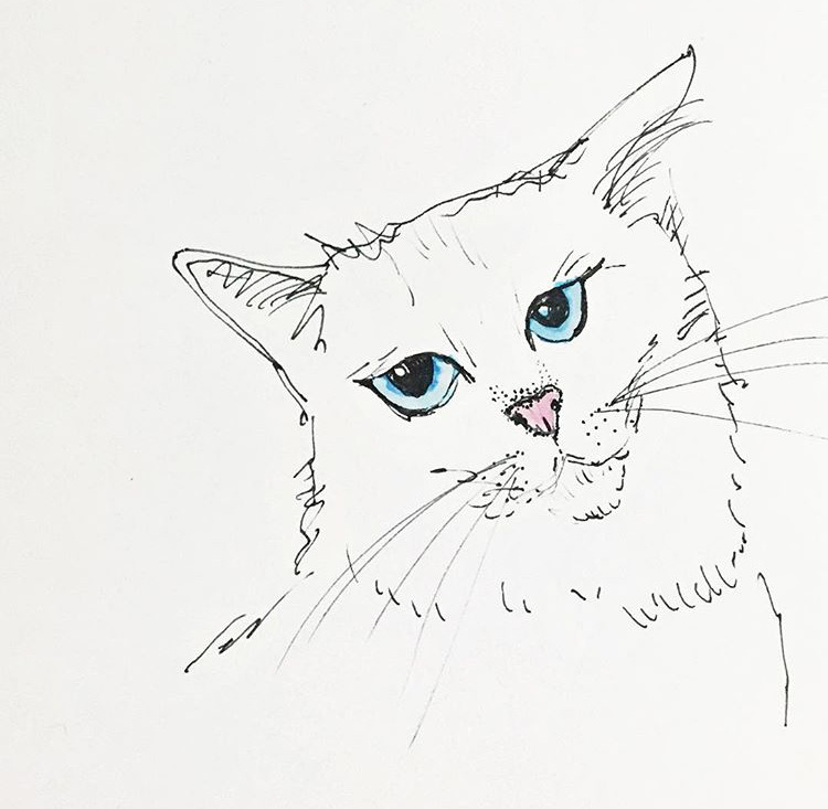 @illustrations_b