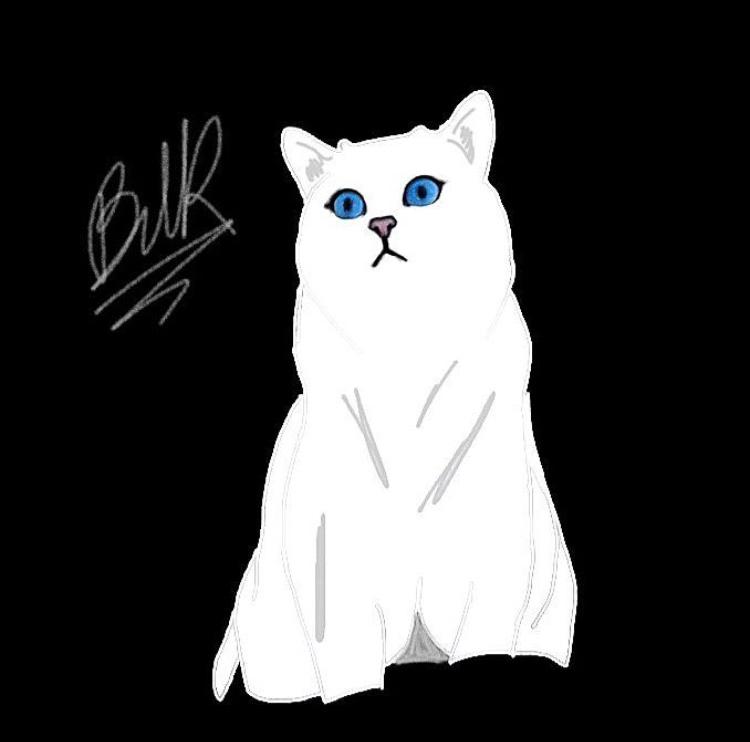 @bella__draws