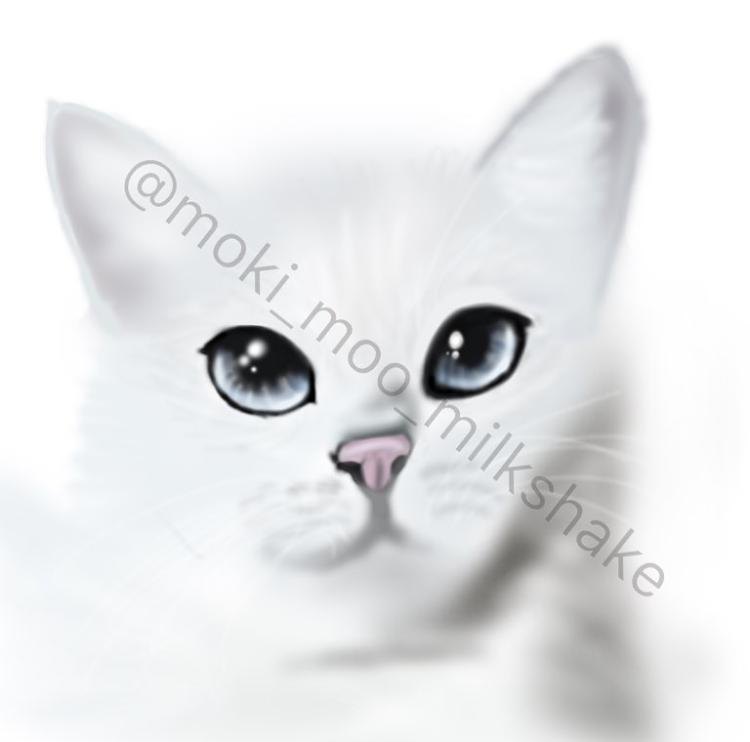 @moki_moo_milkshake