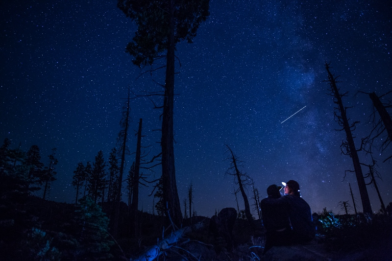 Starry Sky (800x533).jpg