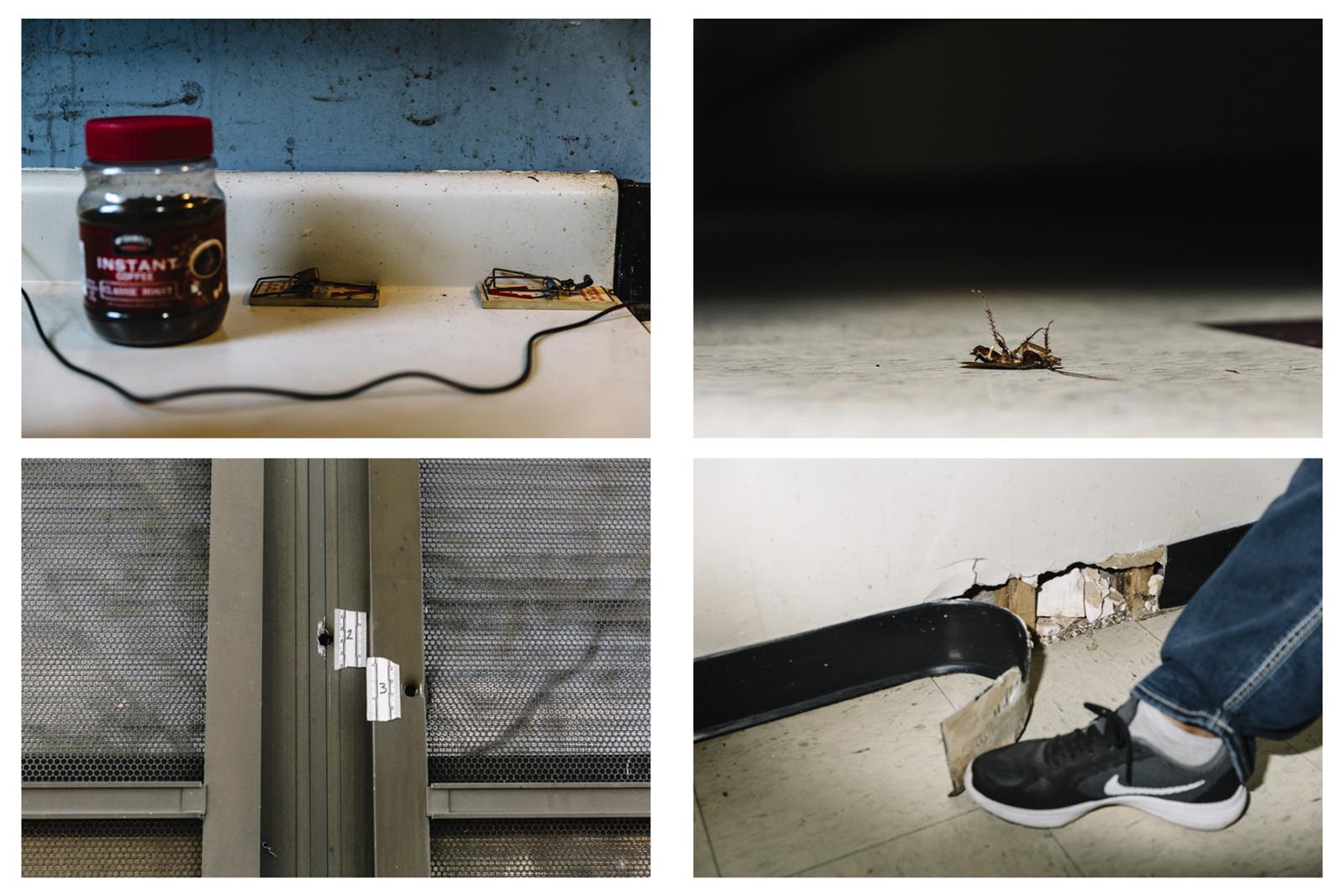 Widmer_HOUSING-12.jpg