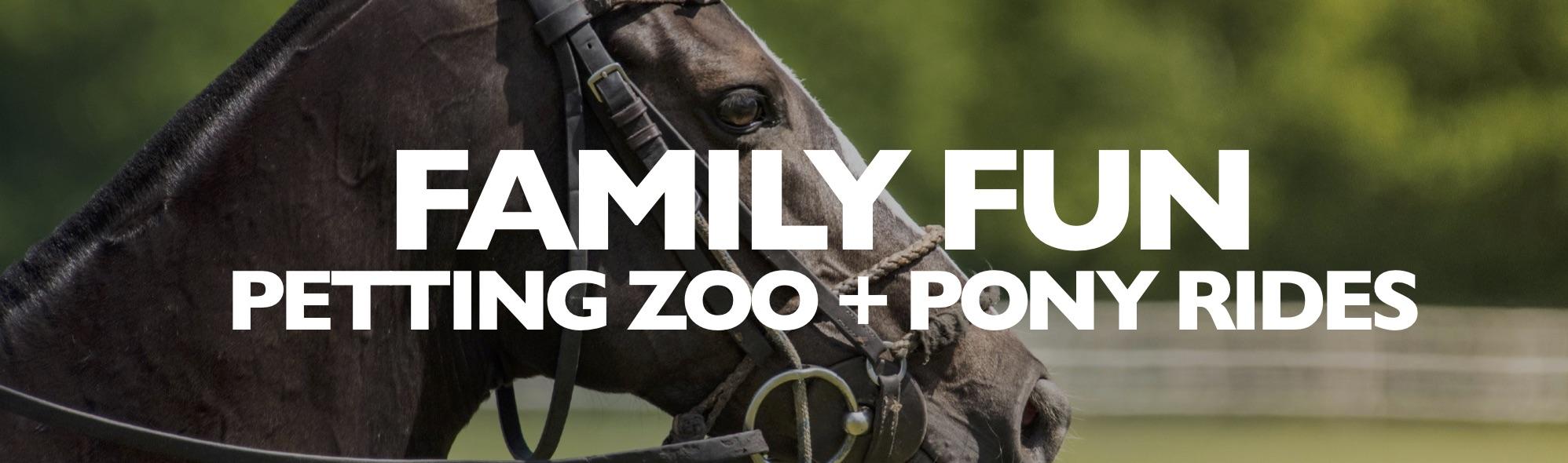 Family Entertainment JPEG.jpg