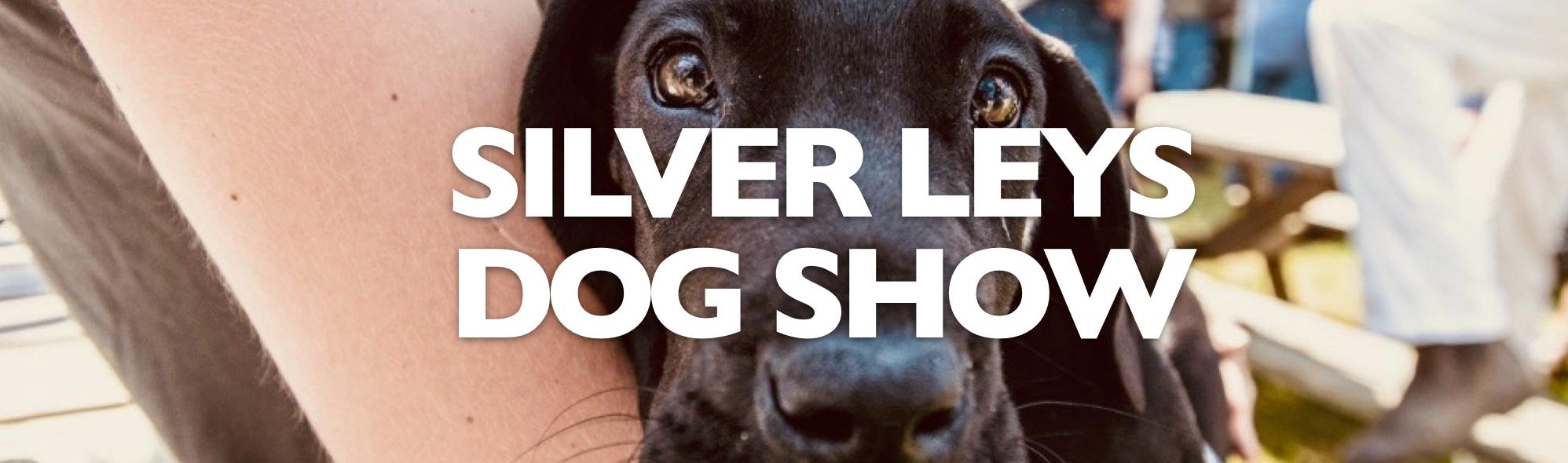 Dog Show Banner JPEG.jpg
