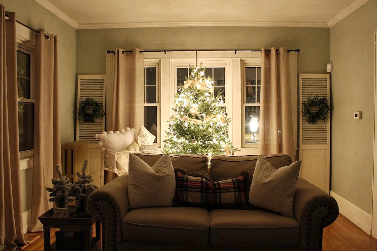 Live christmas tree at night