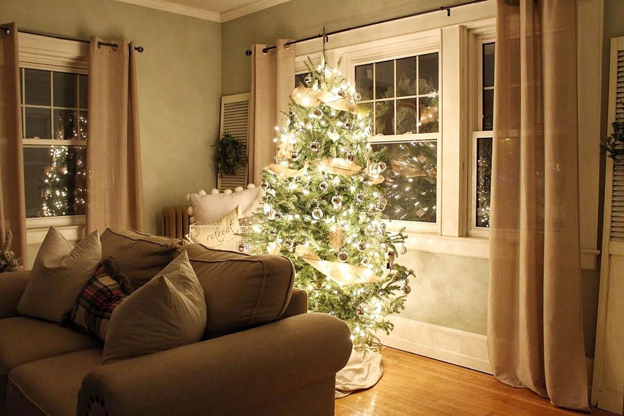 night time christmas tree