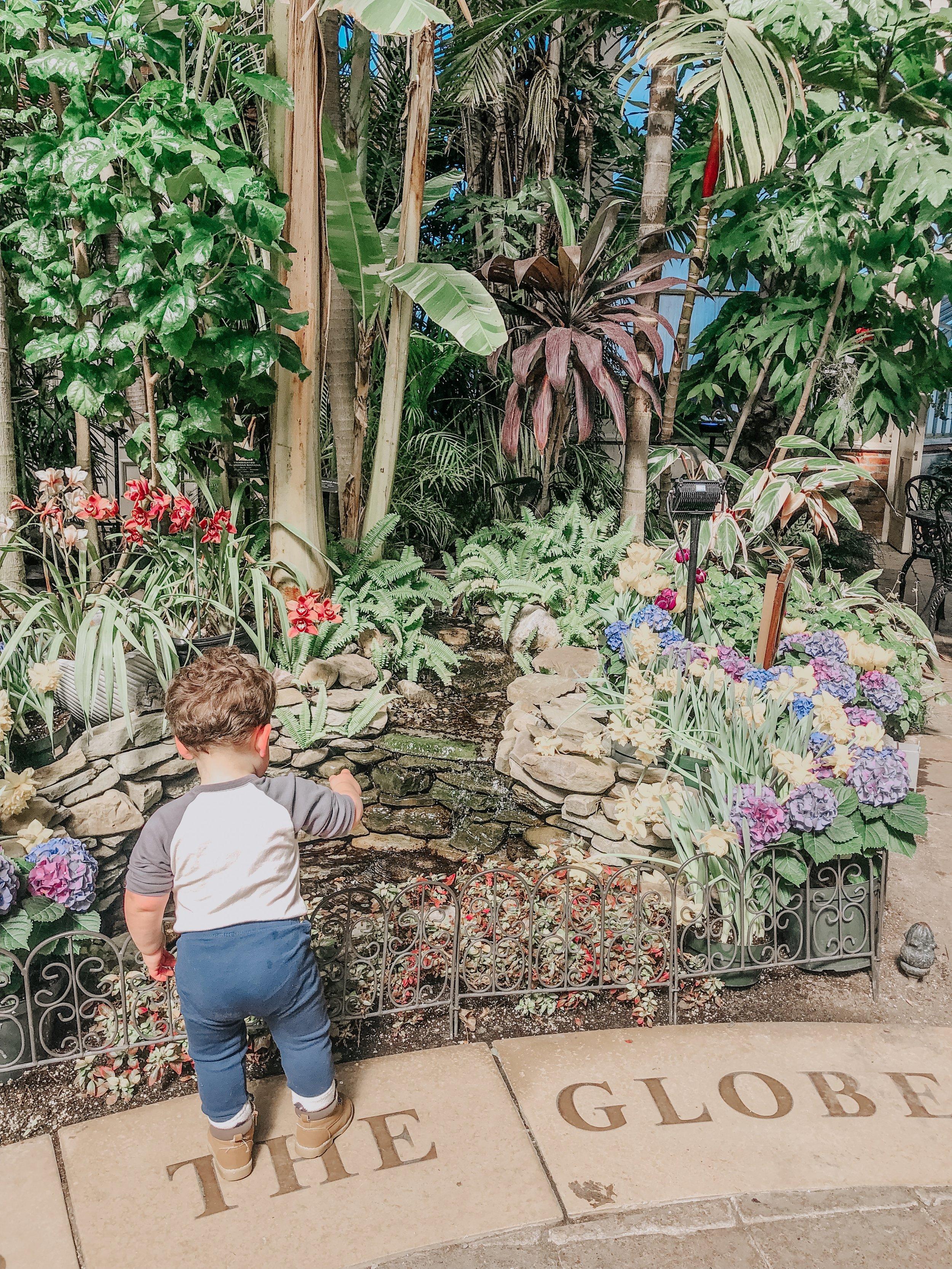 Botanical Gardens in Buffalo