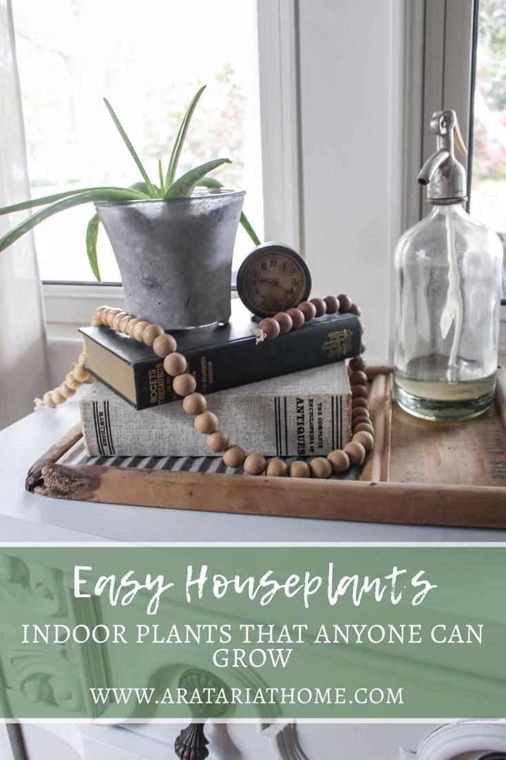 Easy Houseplants