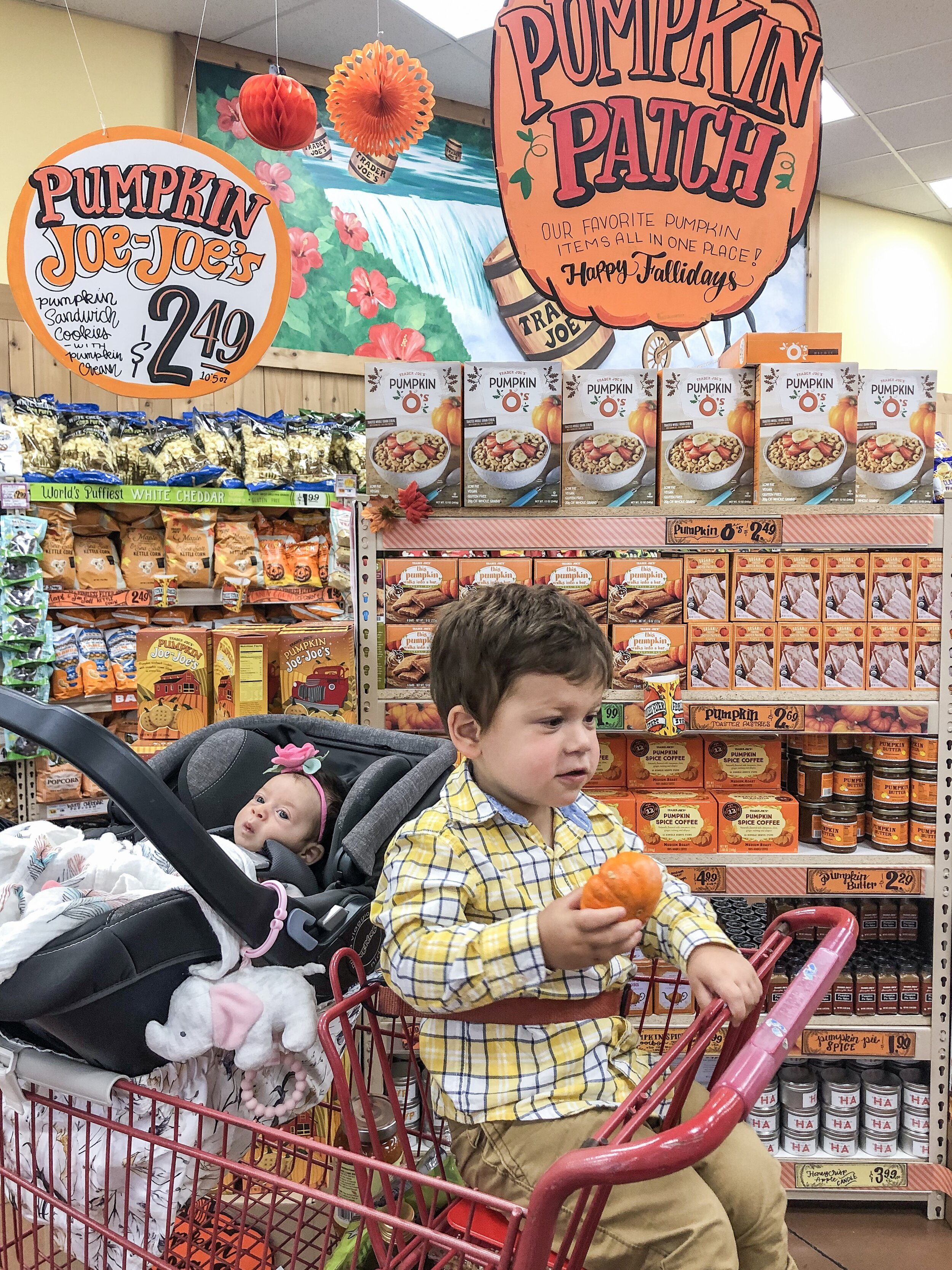Dominic and Giulietta in the pumpkin patch at Trader Joe's