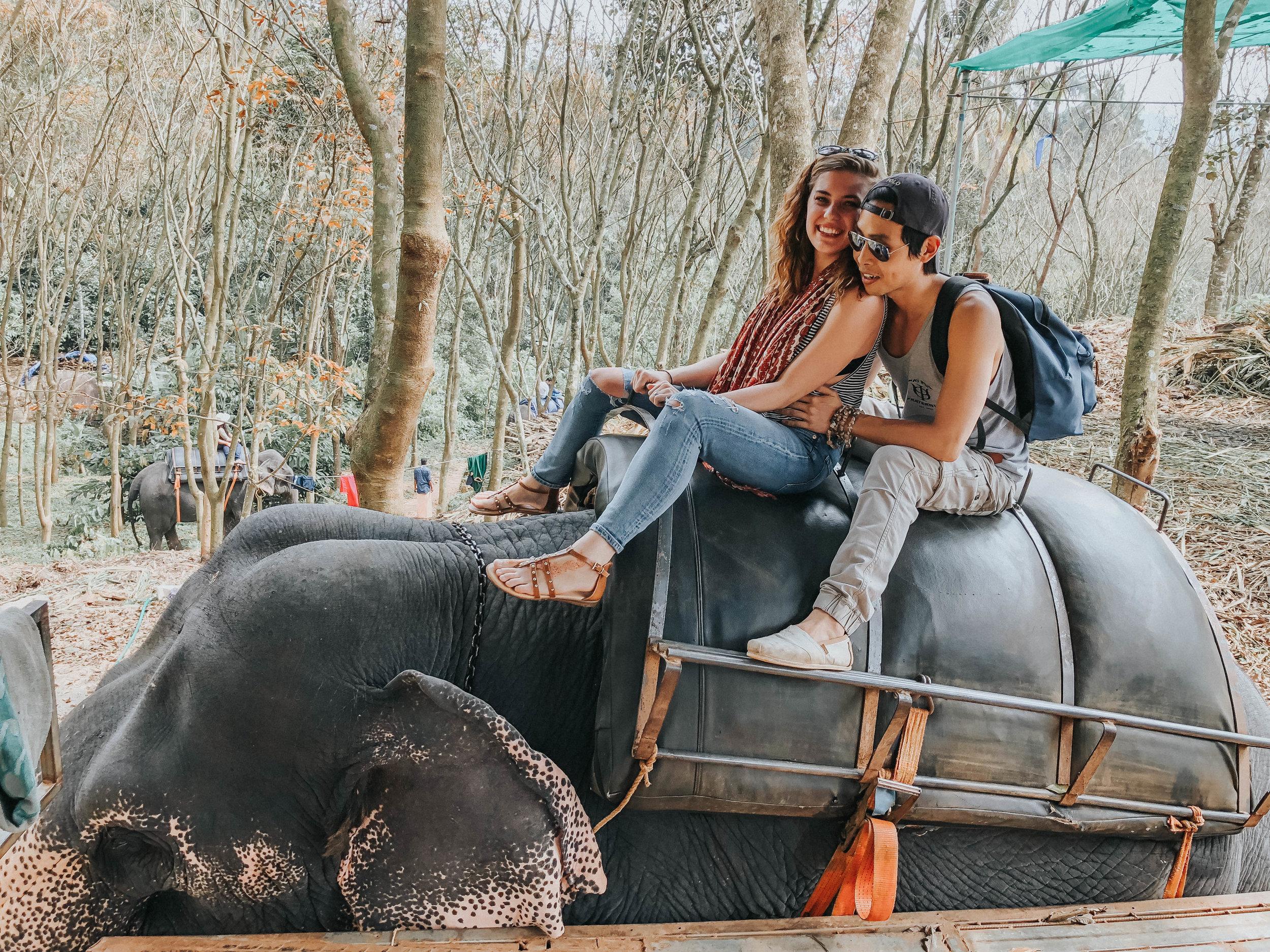 Elephant Rides with my love   Kerala, India