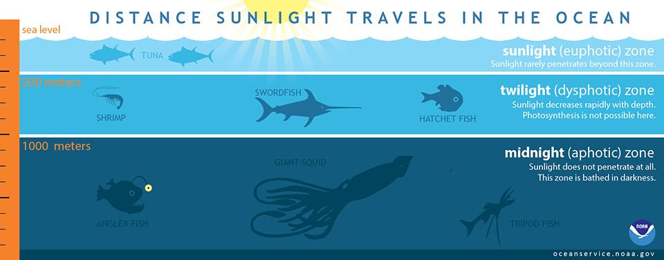 lightinocean.jpg