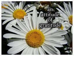 attitudegratitude