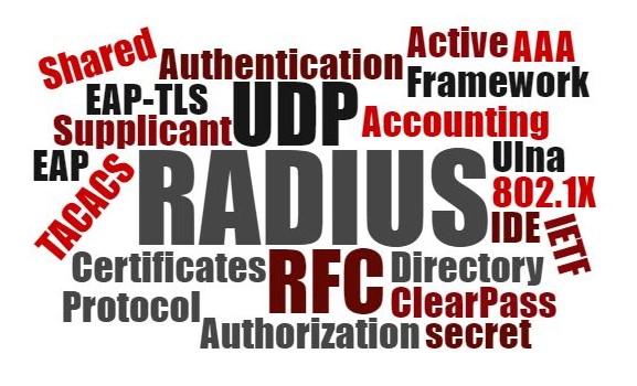 RADIUS rectangle wordcloud cropped.jpg