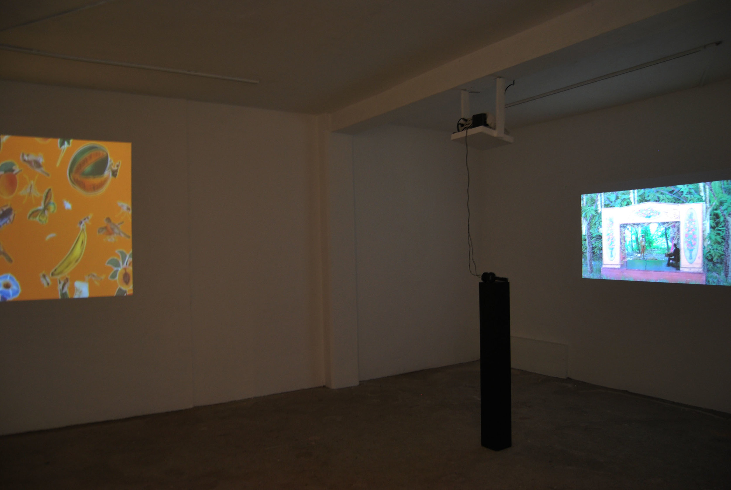 """Installation shot of exhibition """"Crossing the Line."""" Three Walls at Centro Cultural Border, DF, Mexico, 2015. Left: Beto Gonzales, right: Joey Fauerso."""