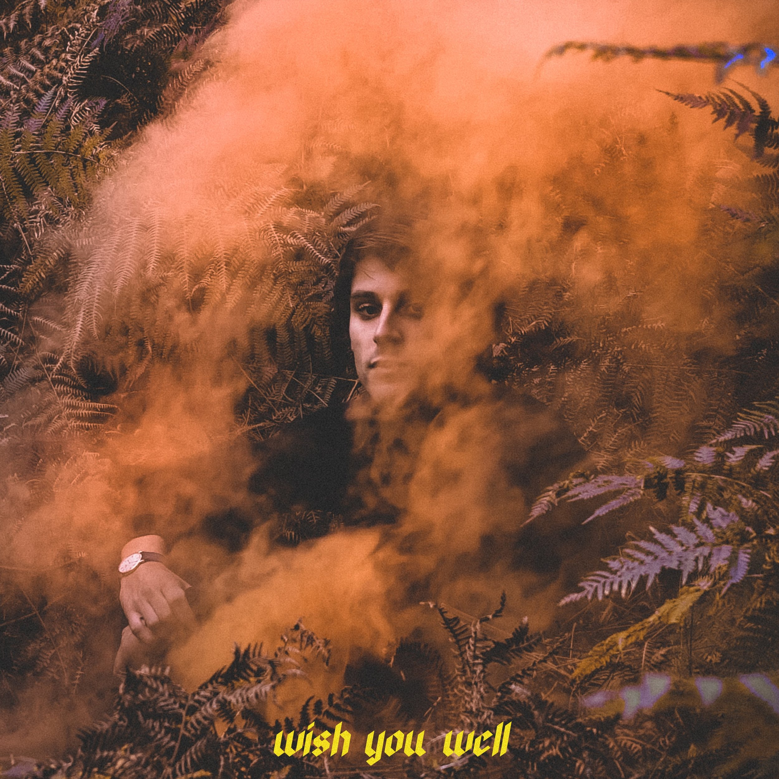 WISH YOU WELL (COVER) 2MB.jpg