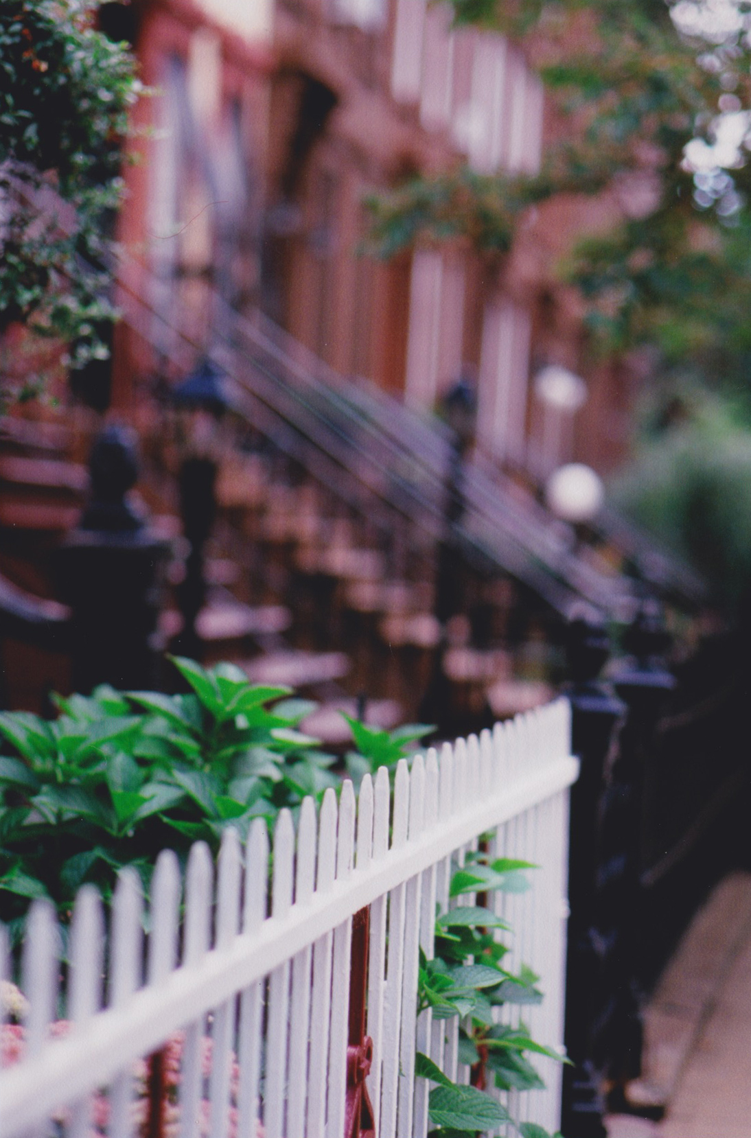 brooklyn_analogue.jpg