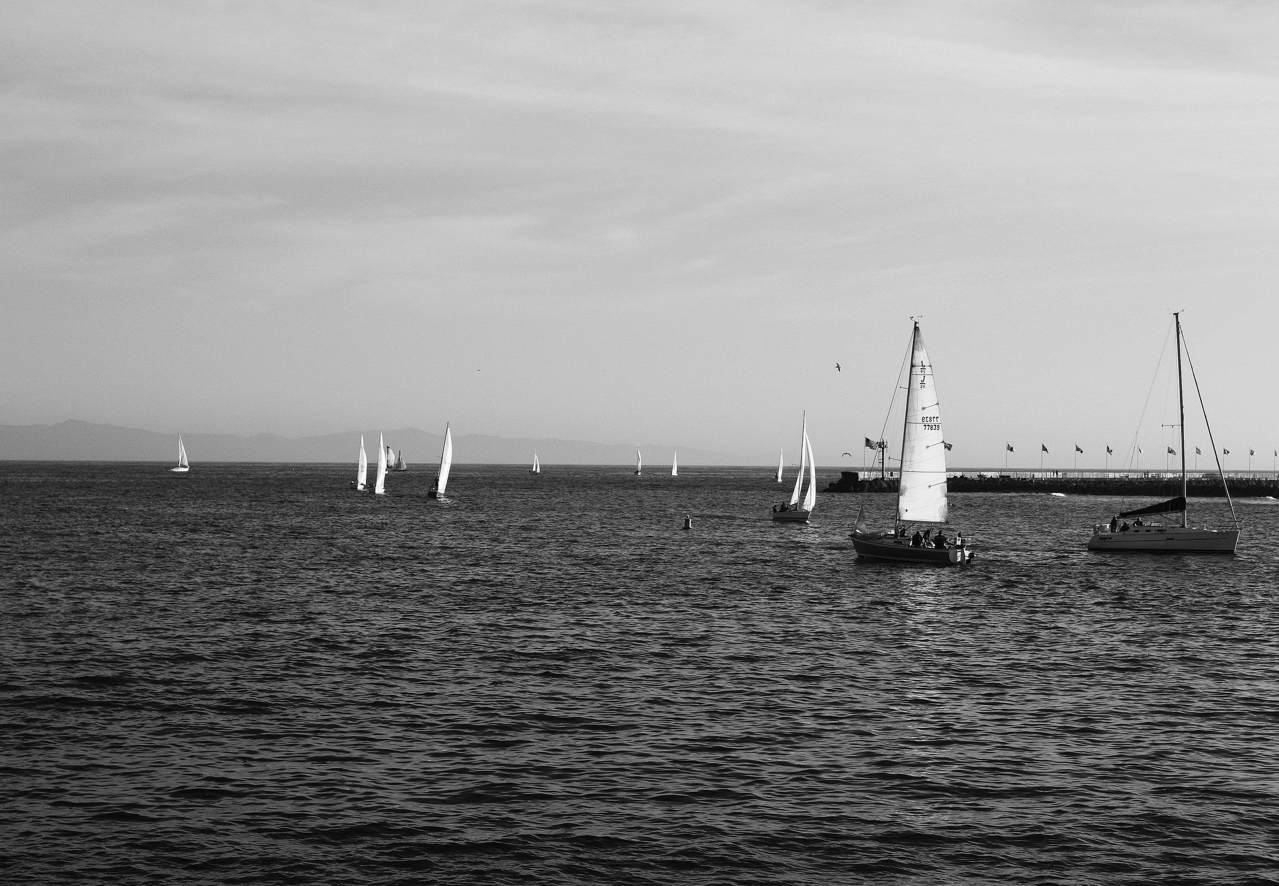 sbsailboats_kelseywilhmphoto.jpg