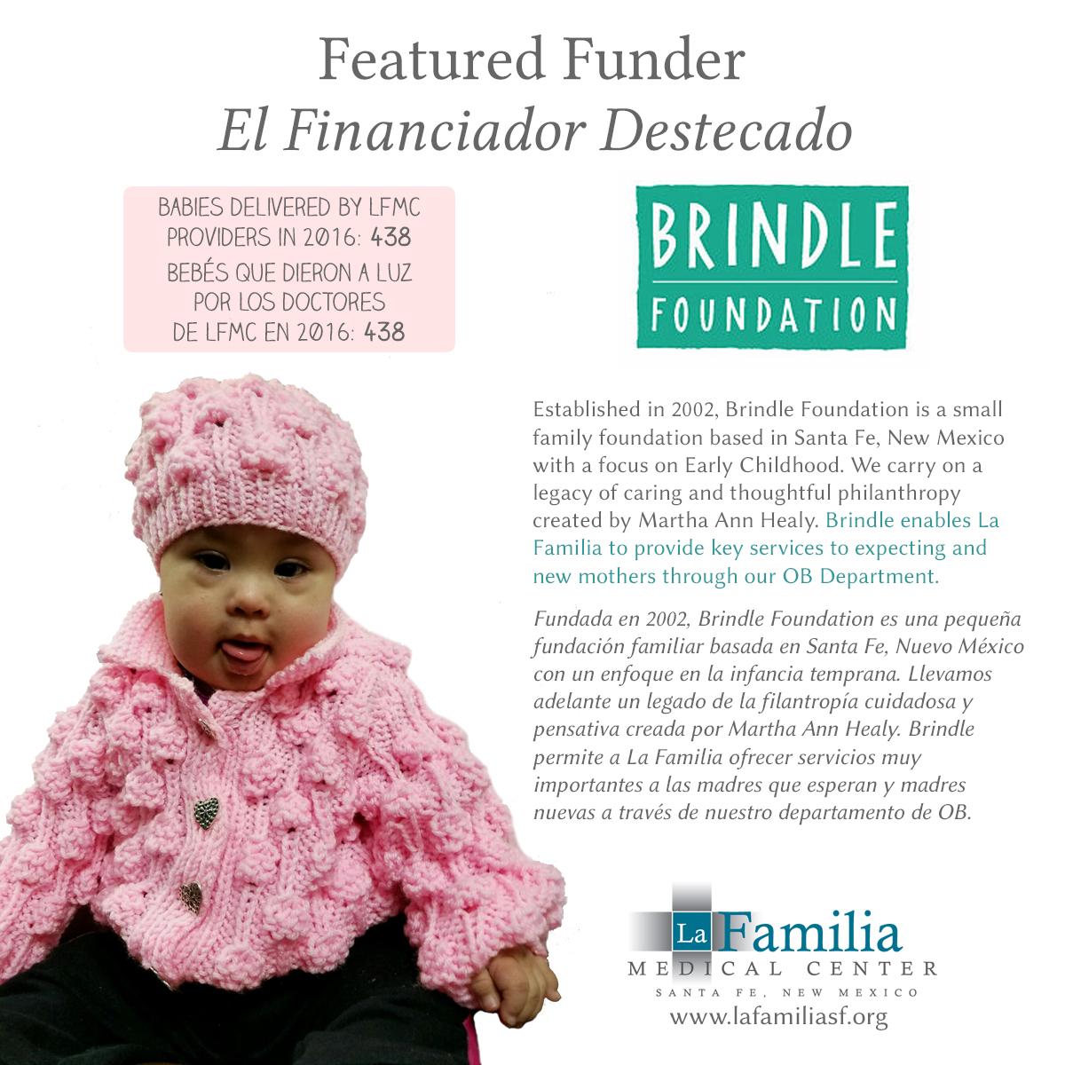 Brindle Foundation.jpg