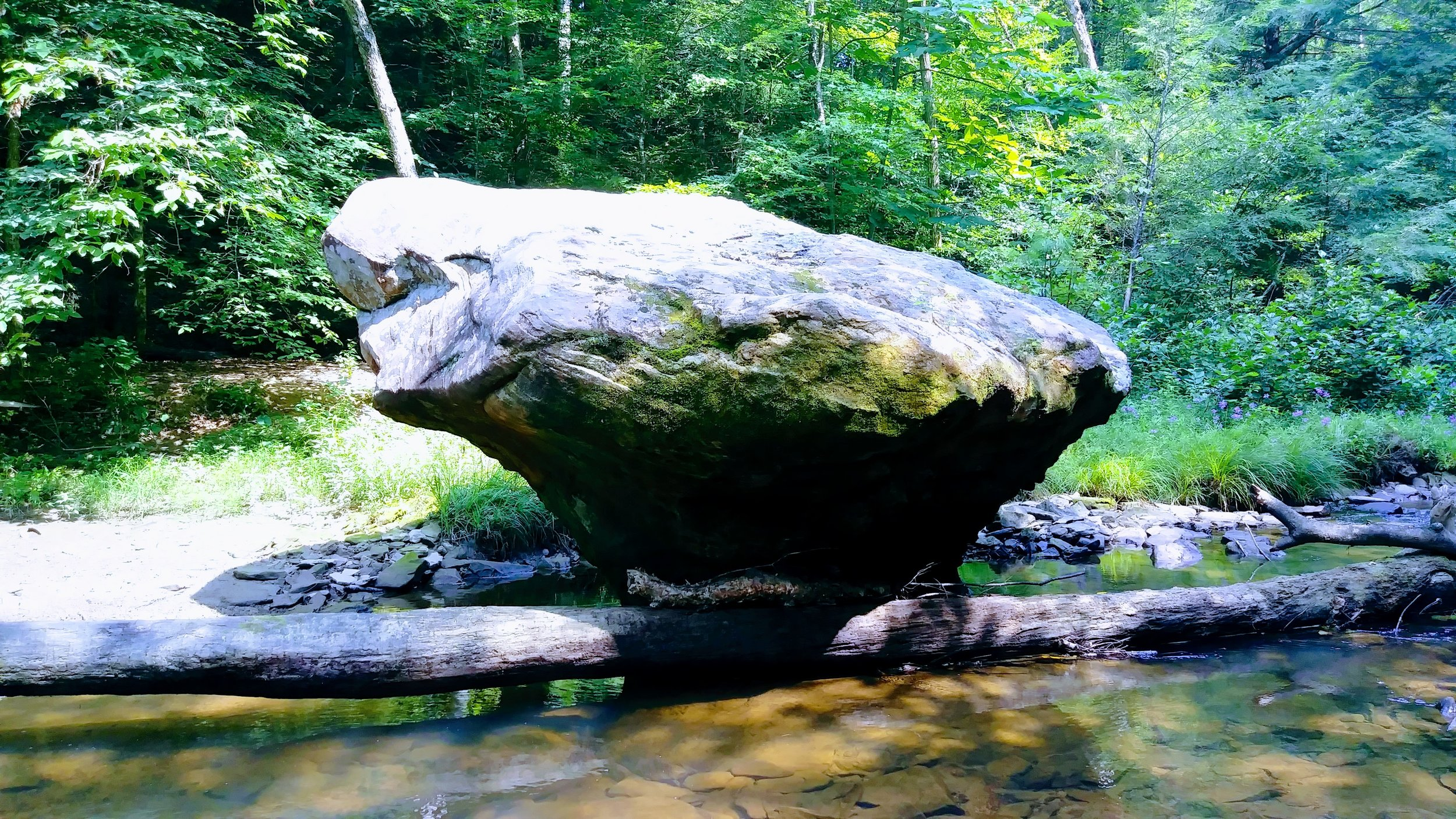 This beautiful rock can be found just off Swift Camp Creek Trail near a large waterside backcountry camping area - look for it when you first descend to the creek.