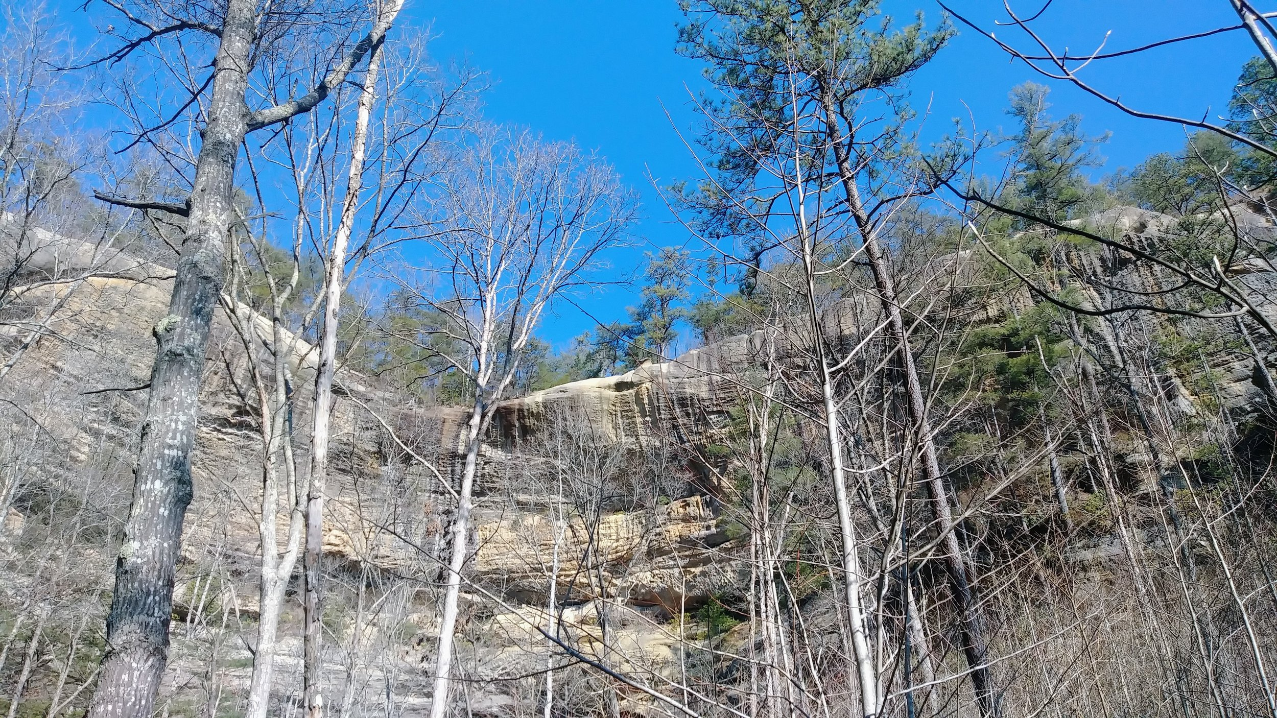 Looking up at Frog's Head on Indian Staircase Loop, Sheltowee Trace