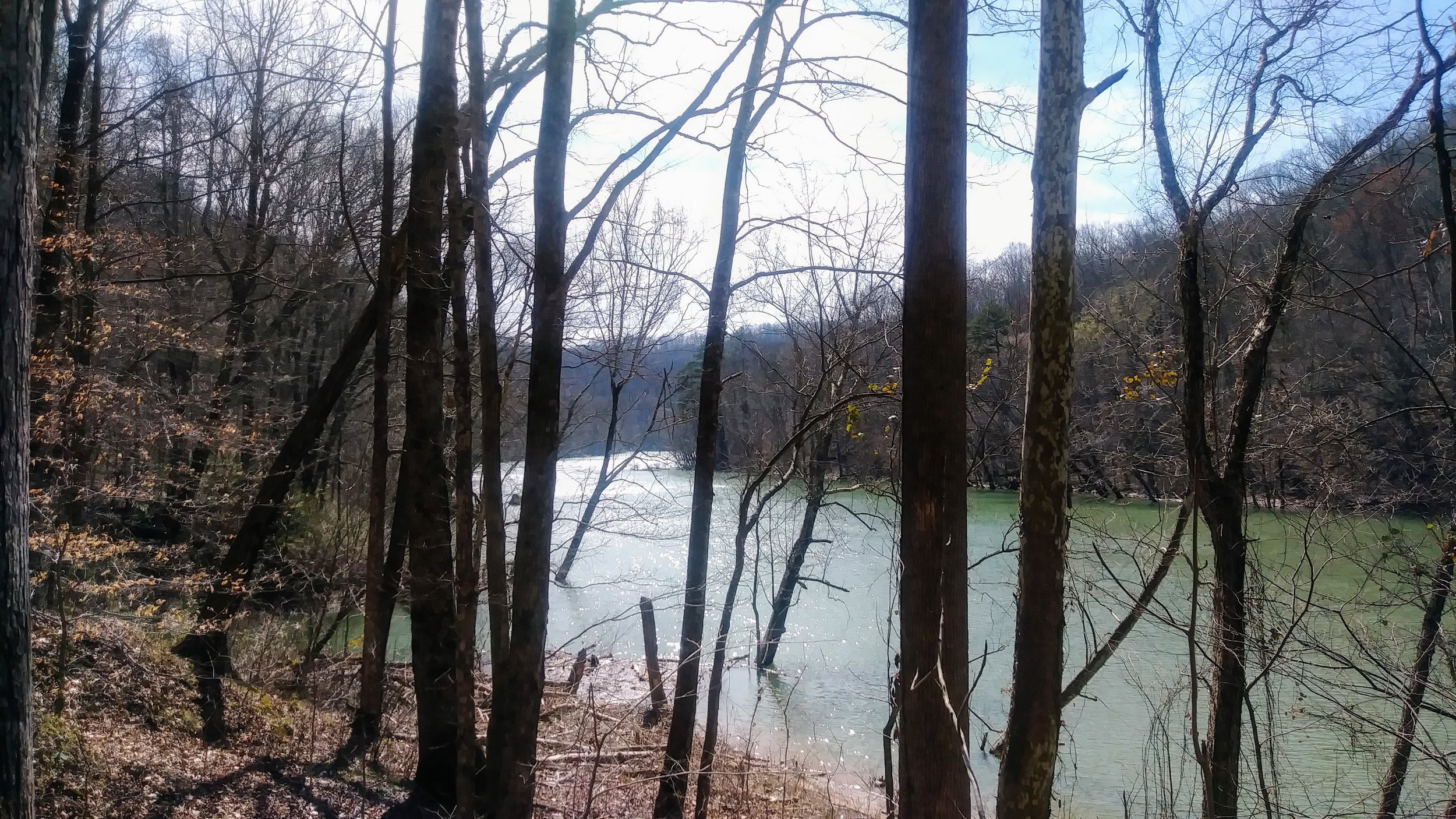 Looking out at Big South Fork from Sheltowee Trace.