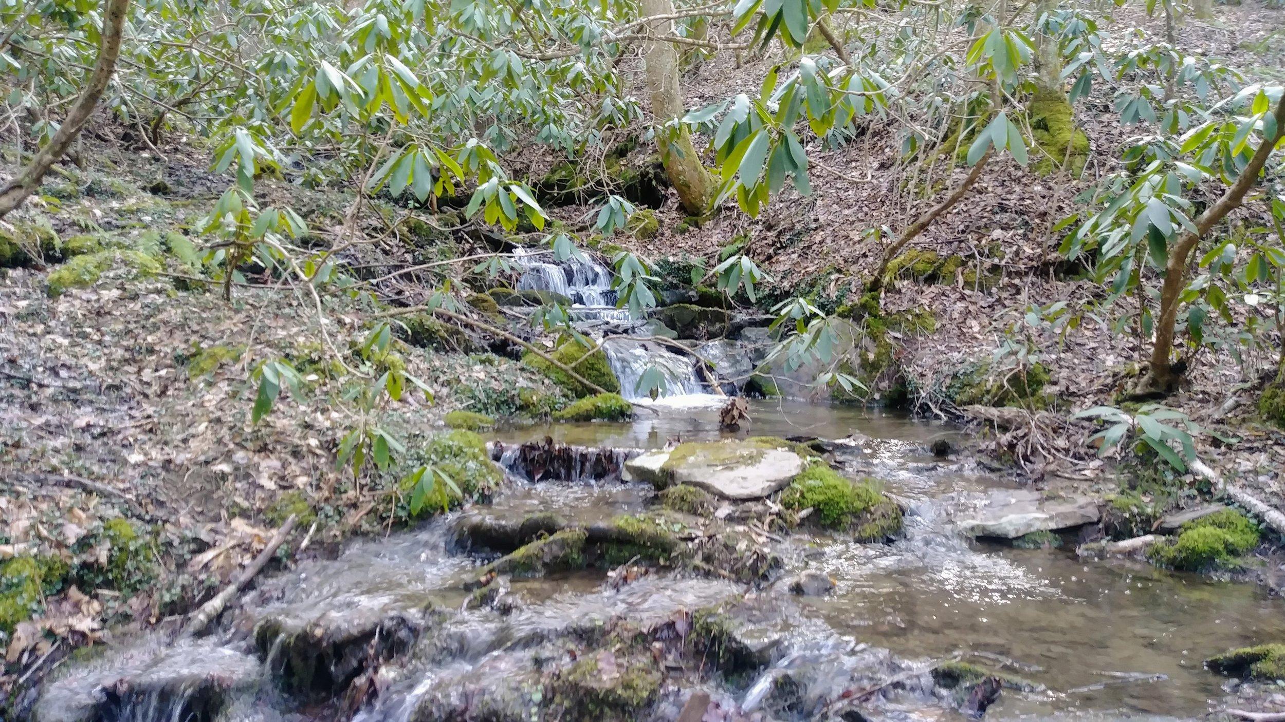 A small cascade above Lick Creek