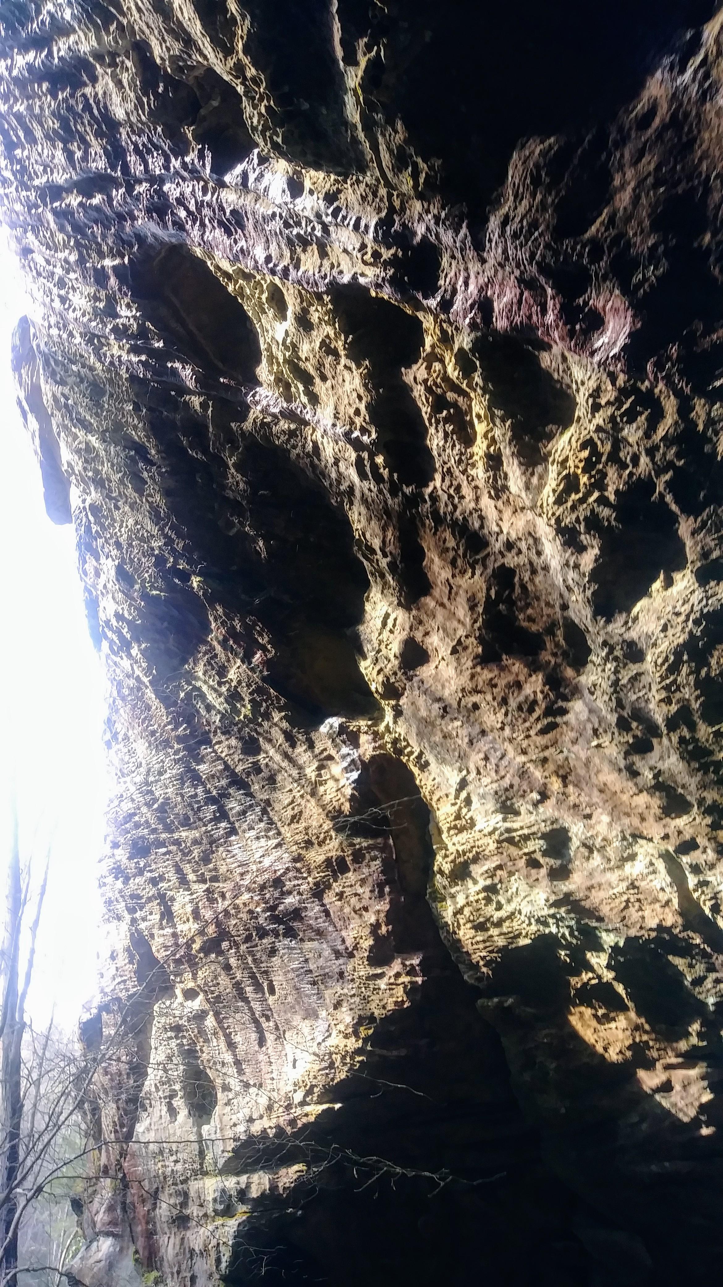 Rock face above Lick Creek Falls Trail