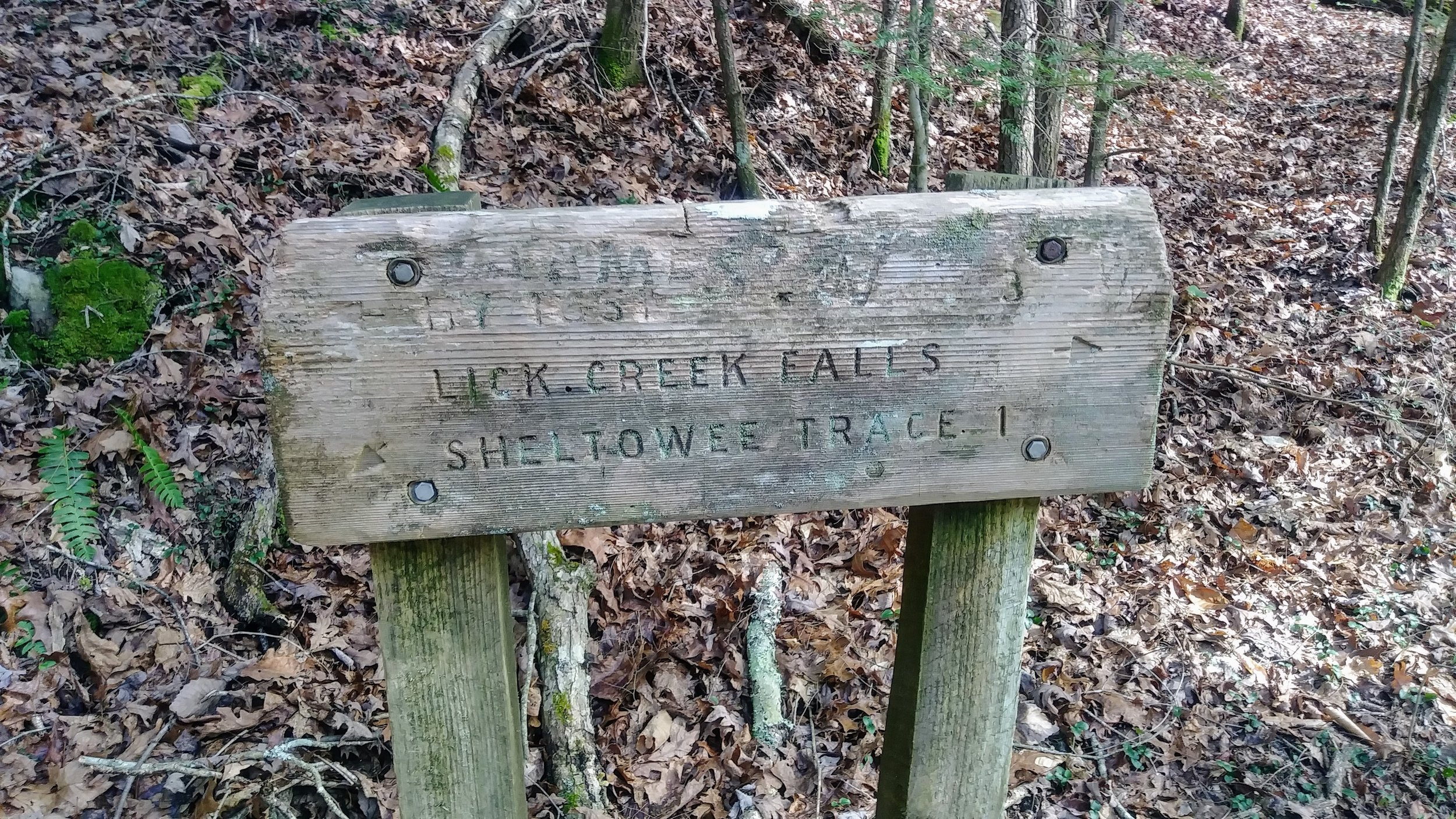 Trail sign coming out of west side of Lick Creek Falls Trail - take a sharp left toward Sheltowee Trace to get to Princess Falls