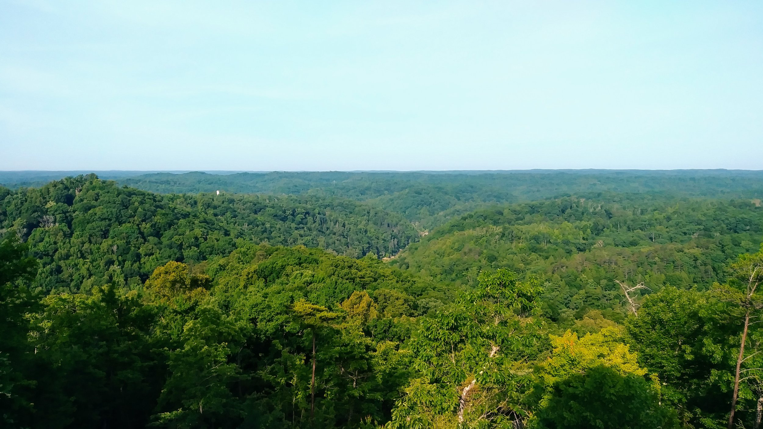 The view of Cumberland River Gorge from Pinnacle Knob Fire Tower