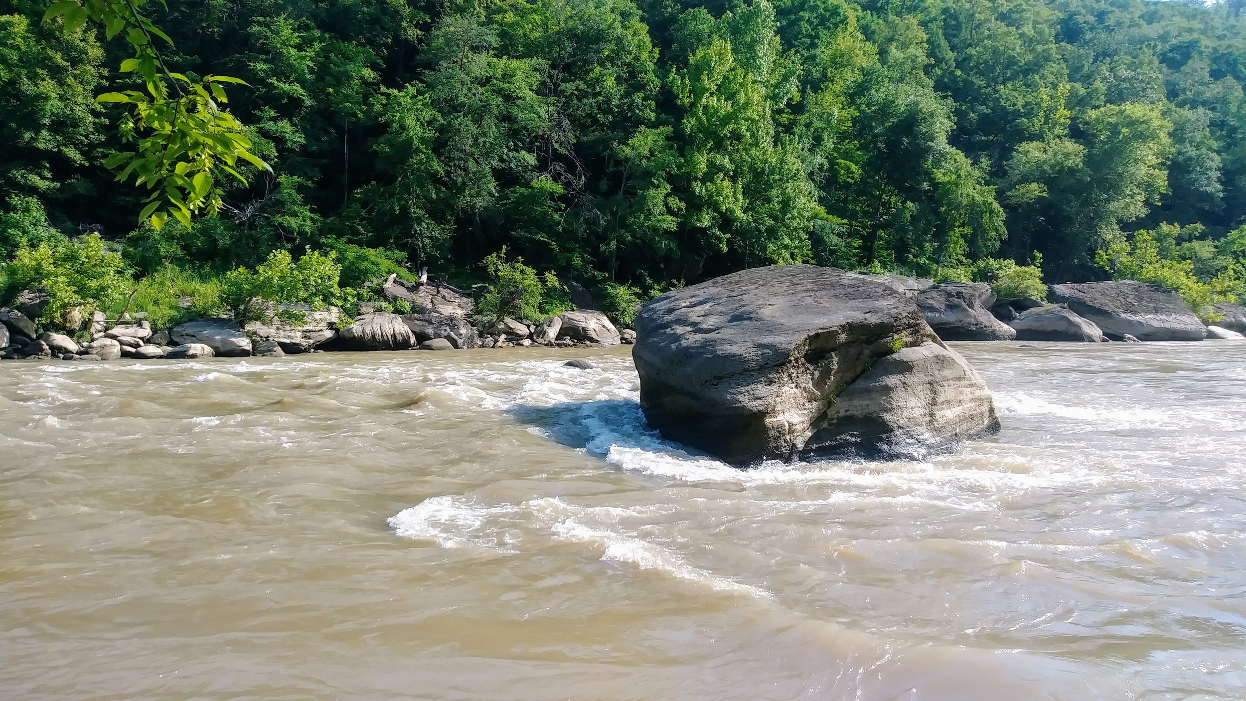 One of many boulders in Cumberland River along the Moonbow Trail/Sheltowee Trace