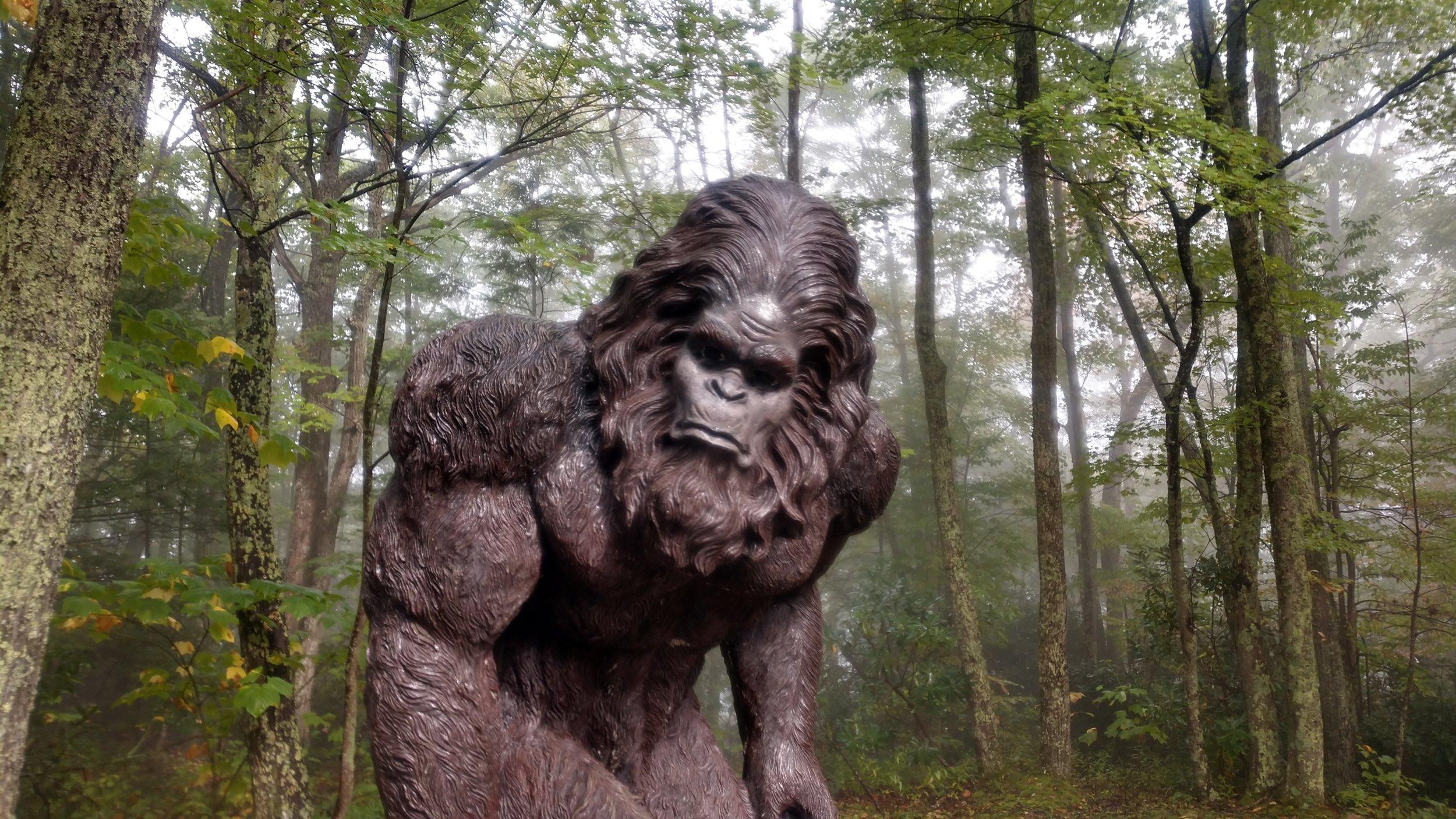 Woodbooger a.k.a. Bigfoot near Flag Rock in Norton, Virginia