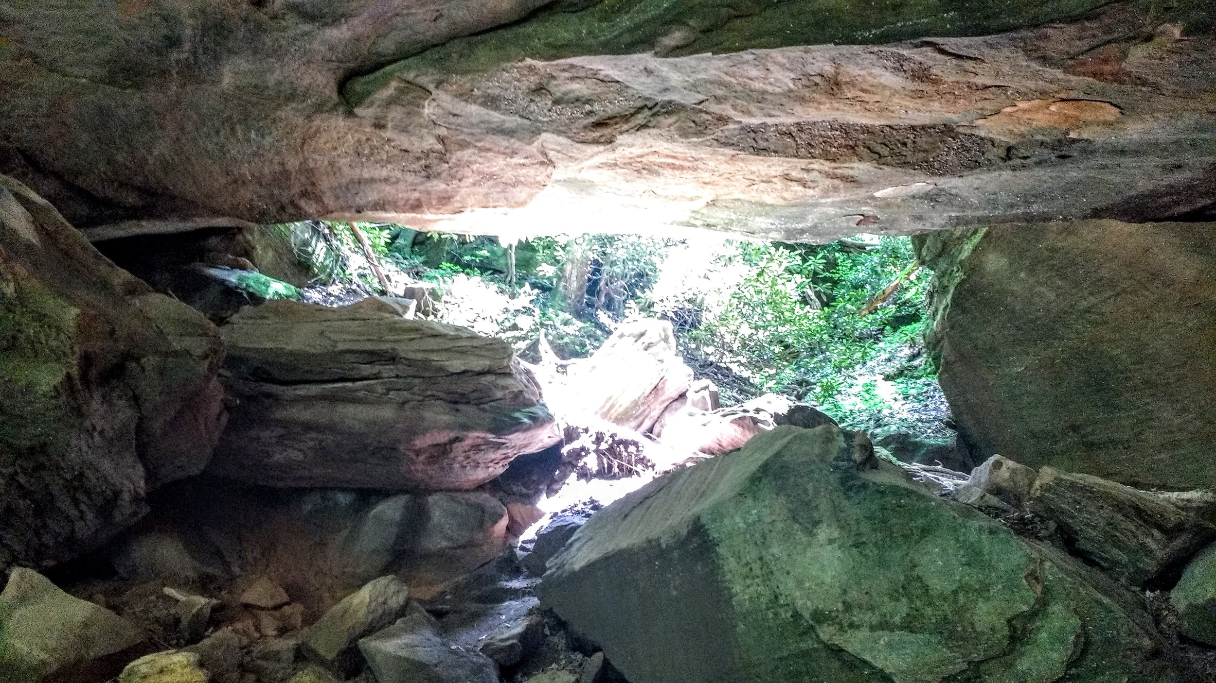 A view from inside Whittleton Arch in Daniel Boone National Forest