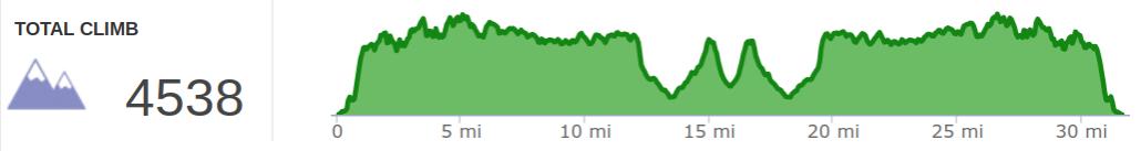 2019 Big Turtle 50K Elevation Profile.png