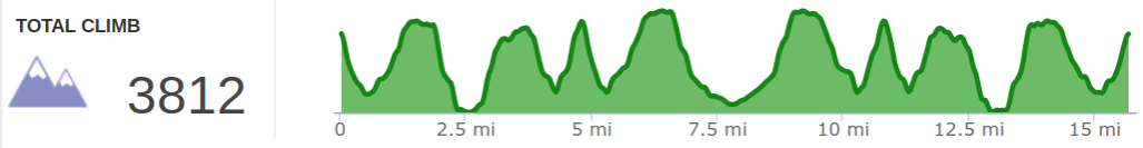 Elevation Profile of Rough Trail Out and Back Hike.png