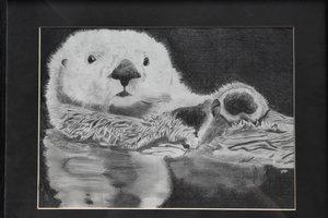 sea-otter-art.jpg