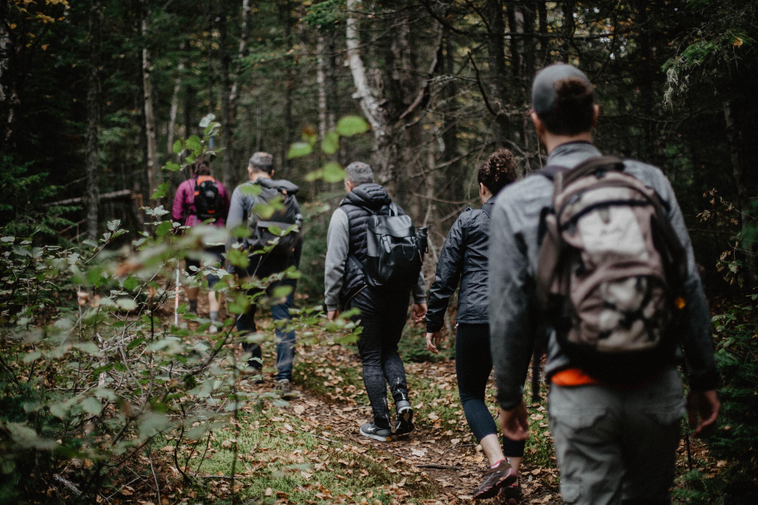 Activité de randonnée dans Charlevoix
