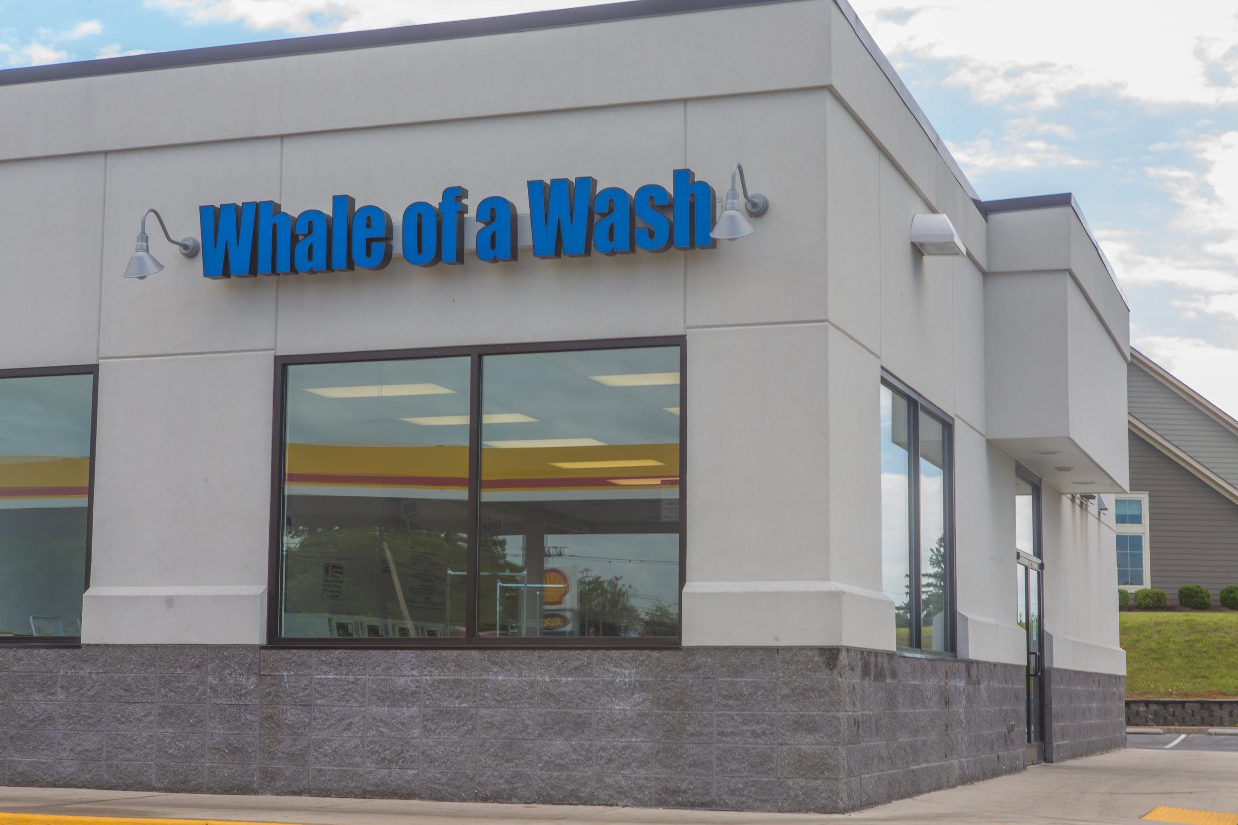 WhaleOfAWash_HR-2149809.jpg