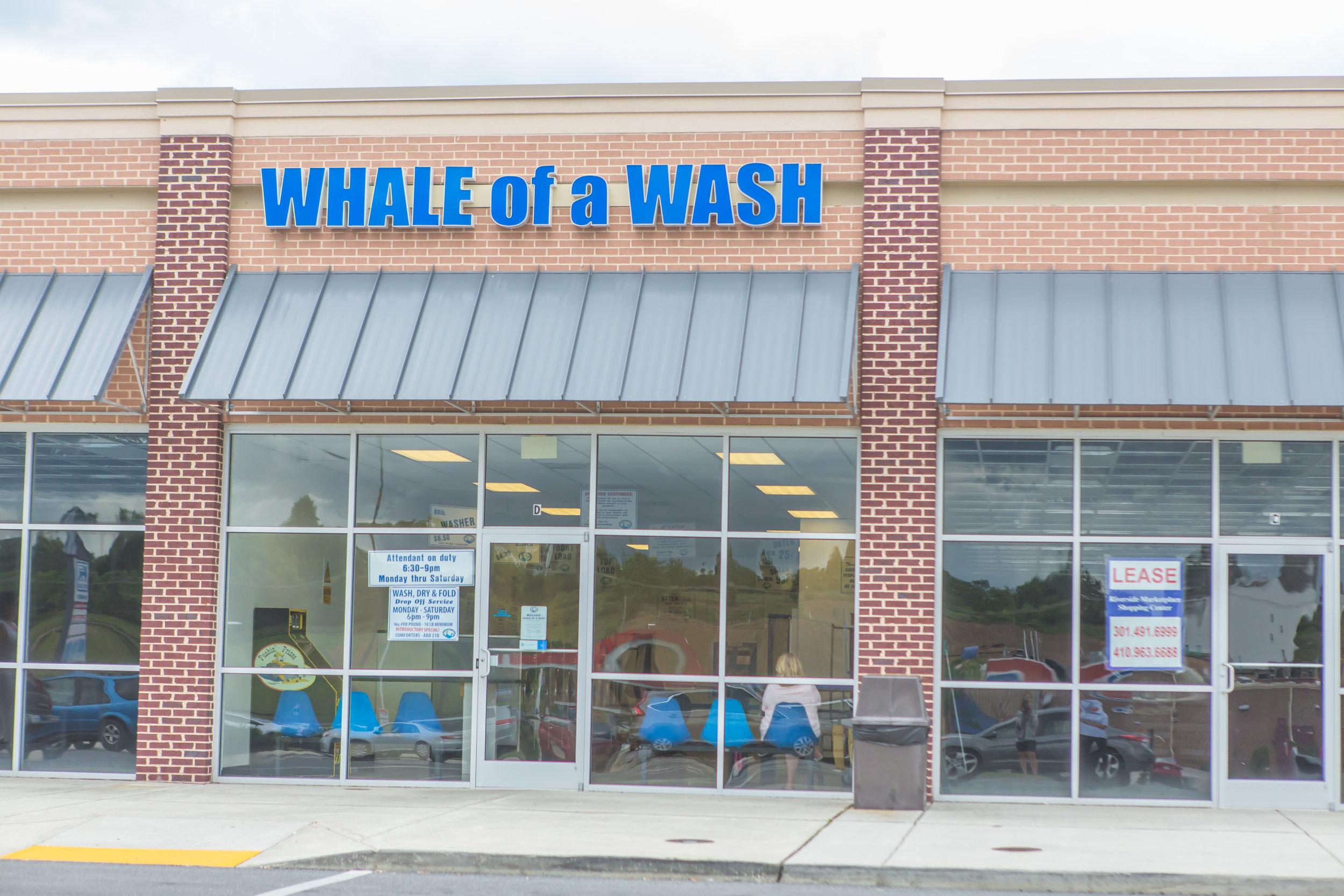 WhaleOfAWash_HR-4810144.jpg