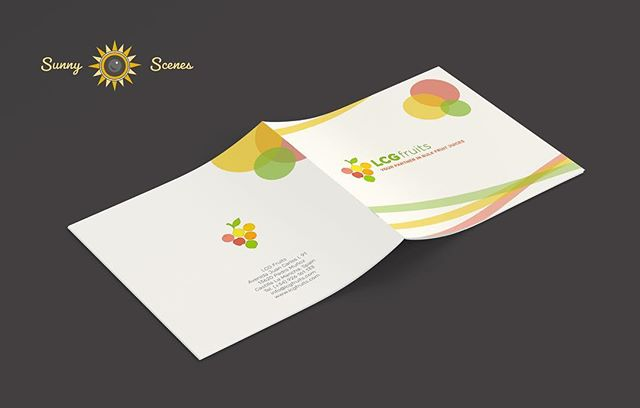Swipe ➡️ We just designed our first business/product catalog for Spain-based bulk fruit juice company, LCG Fruits. Working in a different time zone (and continent) can be challenging, but we were able to turn this project around in just 3 days!  #collaboration #graphicdesign #smallbusinessdesign #brochuredesign #mockupdesign